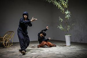 首届云南杨丽萍国际舞蹈季工作坊