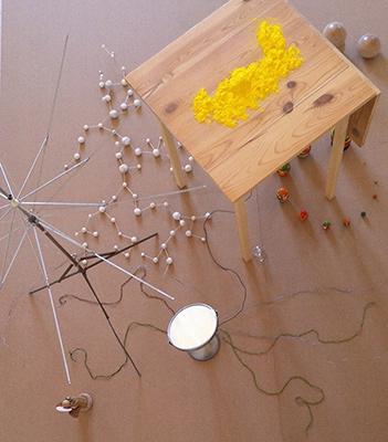 Jannike Brantås, Still Life, Installation